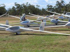 Regatta Gliders